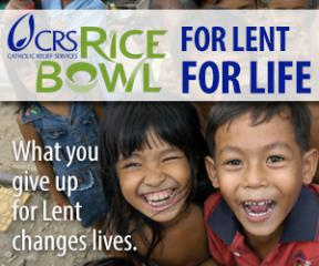 2013 CRS Operation Ricebowl Banner
